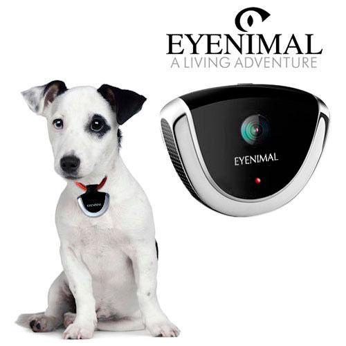 Cámara de acción para mascotas Eyenimal